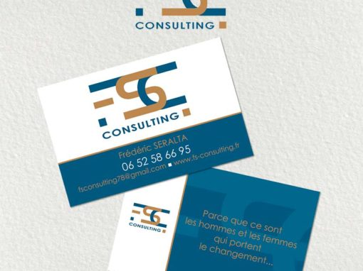 Logo, carte de visite et flyer FS Consulting